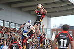 Dragons flanker Lewis Evans wins the line out ball.<br /> RaboPro 12<br /> Newport Gwent Dragons v Connacht<br /> Rodney Parade<br /> 23.03.14<br /> <br /> &copy;Steve Pope-SPORTINGWALES