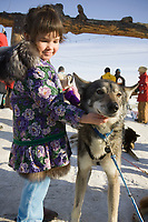 Young girl from Nome scratches the neck of a Dries Jacobs dog shortly after Dries crossed the finish line in Nome.