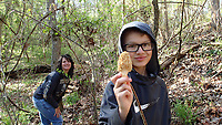 NWA Democrat-Gazette/FLIP PUTTHOFF <br /> Few morel mushrooms go undetected with Melissa Nichols (left) and her son, D.J., 13, prowl the hollows in search of the springtime treat. D.J. shows one of about 50 morels the pair found April 15 in a single hollow near Pineville, Mo.