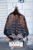 shark fins being cooked in the base of a turtle shell, Jordan (Middle East)