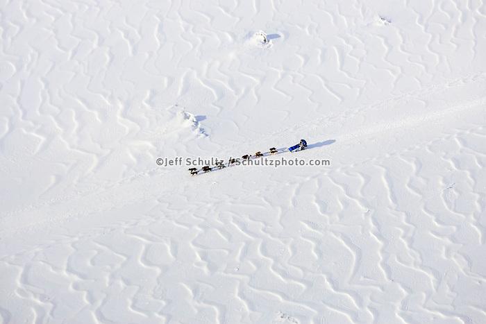 Aerial of John Bakers team running down frozen Yukon River drifted snow patterns 2006 Iditarod Alaska Winter