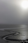 Tidal flats near Havelock at low tide, North Island, New Zealand