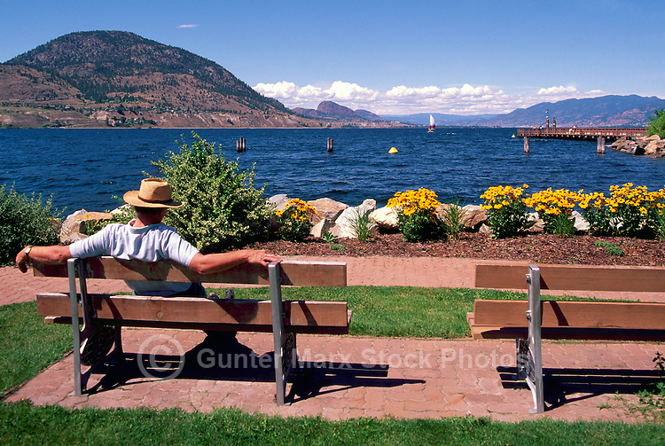Okanagan Lake, Penticton, South Okanagan Valley, BC, British Columbia,  Canada, Summer - Man sitting on Bench