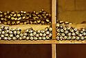 18/11/05 - THIERS - PUY DE DOME - FRANCE - Stock de couteaux LAGUIOLE - Photo Jerome CHABANNE