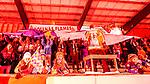 Bolln&auml;s 2014-01-17 Bandy  Bolln&auml;s GIF - Villa Lidk&ouml;ping BK :  <br />  Bolln&auml;s Flames supportrar p&aring; S&auml;vsta&aring;s l&auml;ktare<br /> (Foto: Kenta J&ouml;nsson) Nyckelord:  supporter fans publik supporters
