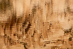 Abstract of brown water reflection from rocks at Barker Dam
