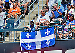 25 July 2012: A Montreal Expos Fan flies the Province of Quebec flag during a game between the Washington Nationals and the New York Mets at Citi Field in Flushing, NY. The Nationals defeated the Mets 5-2 to sweep their 3-game series. Mandatory Credit: Ed Wolfstein Photo