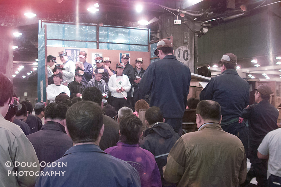 Tuna Auction with auctioneers (backs) and buyers (on stand facing), Tsukiji fish market, Tokyo Japan