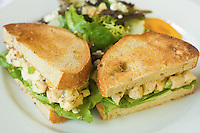 Chicken Salad Sandwhich on a plate with a salad. Prepared food