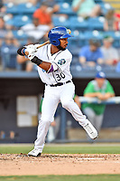 Asheville Tourists LeeMarcus Boyd (30) at bat during a game against the Lexington Legends at McCormick Field on July 1, 2019 in Asheville, North Carolina. The Tourists defeated the Legends 9-8. (Tony Farlow/Four Seam Images)