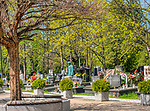 Aleja Zasłużonych na Cmentarzu Rakowicki ,miejsce spoczynku zasłużonych mieszkańców Krakowa: wybitnych uczonych, artystów, pisarzy, ludzi teatru, działaczy społecznych, i zasłużonych prezydentów miasta.