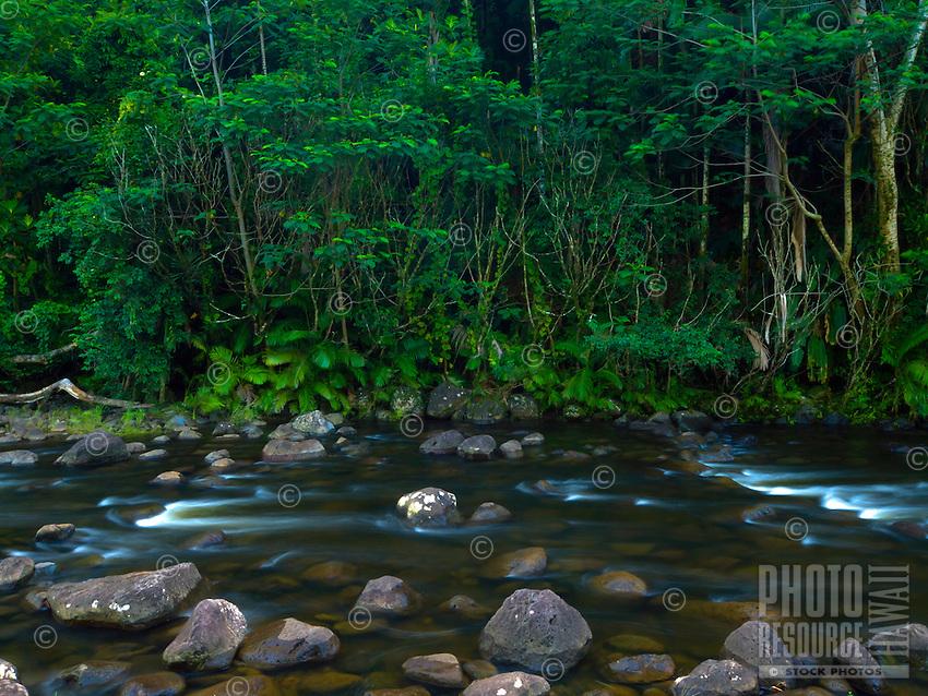 Kolekole Stream flows into the ocean along the Hamakua Coast of the Big Island of Hawai'i.
