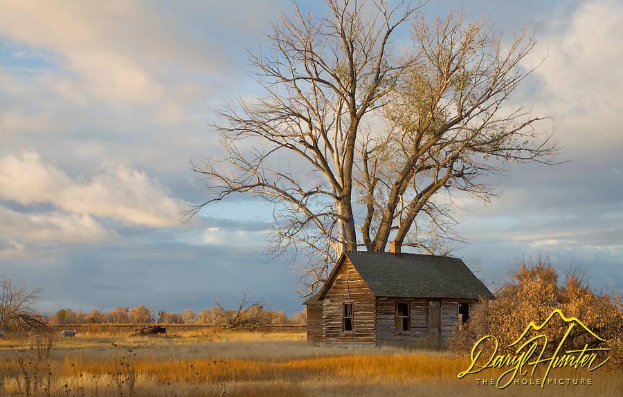 Old Homestead, Rigby, Idaho