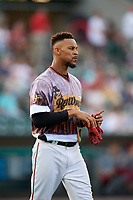 Rochester Red Wings center fielder Byron Buxton (25) during a game against the Lehigh Valley IronPigs on June 29, 2018 at Frontier Field in Rochester, New York.  Lehigh Valley defeated Rochester 2-1.  (Mike Janes/Four Seam Images)