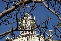 Entre las Ramas..<br />Ramas sin hojas de los arboles sirven como marco para dar una vista diferente a la majestuosa catedral de la capital se Sonora.