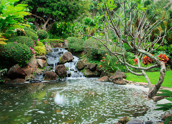 landscape and water, waterfall, Marriott resort, Lihue, Kauai Hawaii