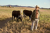 A farmer with two oxen in a field in Santa Clara province.