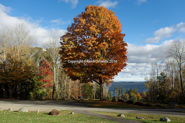 Fall scene at Camden Hills State Park, Maine, USA.