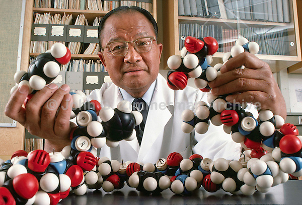 Dr. Choh Hao Li,  biochemist and leading researcher in the functions of the pituitary gland, at the University of California Medical Center, San Francisco, 1976. Dr. Li holds a molecular model of a natural opiate, beta-endorphin. Photo by John G. Zimmerman