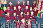 Junior Infants at Holy Family NS Tralee having a wonderful time on their first day at school on Monday were Sophie Anjani, Ronan Ballard, James Charles, Josh Connolly, Ciaran Cooney, Aaron Day, Dean Farrell, Aimee Griffin, Cian Griffin, Roisi?n Hughes, Dylan Hurly, Elisea Mulumba, Megan O'Brien, Amanda Projan, Norella Quirke, Jack Savage, Kacper Tusinski, Robert Vasiu and Trina Flynn-Morriarty................................................................................................................................................................................................................................................................. ............