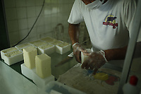 Produção de leite e queijo do Marajó