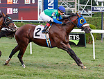 Bootlegger (no. 2) wins Race 8, Sep. 3, 2018 at the Saratoga Race Course, Saratoga Springs, NY.  Ridden by Luis Reyes, and trained by Rudy Rodriguez, Bootlegger  finished 1/2 length in front of Pocket Player (no. 6).  (Bruce Dudek/Eclipse Sportswire)