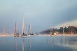 Autumn fog at Kittery Point in Kittery, Maine, USA