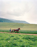 SWITZERLAND, Motiers, Lutin trains with his horse Clatiola in front in a field near their home, Jura Region