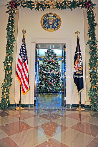 The White House Christmas Tree is displayed in the Blue Room in Washington, DC on Wednesday, November 28, 2012.  This view if from the Grand Foyer looking across the Cross Hall.  The 2012 tree is a 18 foot-6-inch (5.64m) Fraser Fir grown in Jefferson, North Carolina. It is decorated with ornaments decorated by children living on U.S. Military bases around the world..Credit: Ron Sachs / CNP