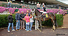 Love Undercover winning at Delaware Park on 9/24/14