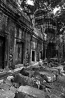 Ta Prom temple  ruins in siem reap, Cambodia, 2016<br /> <br /> Photo : Pierre Roussel - AQP