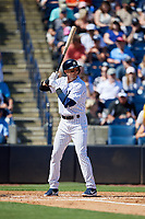 New York Yankees shortstop Troy Tulowitzki (12) at bat during a Grapefruit League Spring Training game against the Toronto Blue Jays on February 25, 2019 at George M. Steinbrenner Field in Tampa, Florida.  Yankees defeated the Blue Jays 3-0.  (Mike Janes/Four Seam Images)