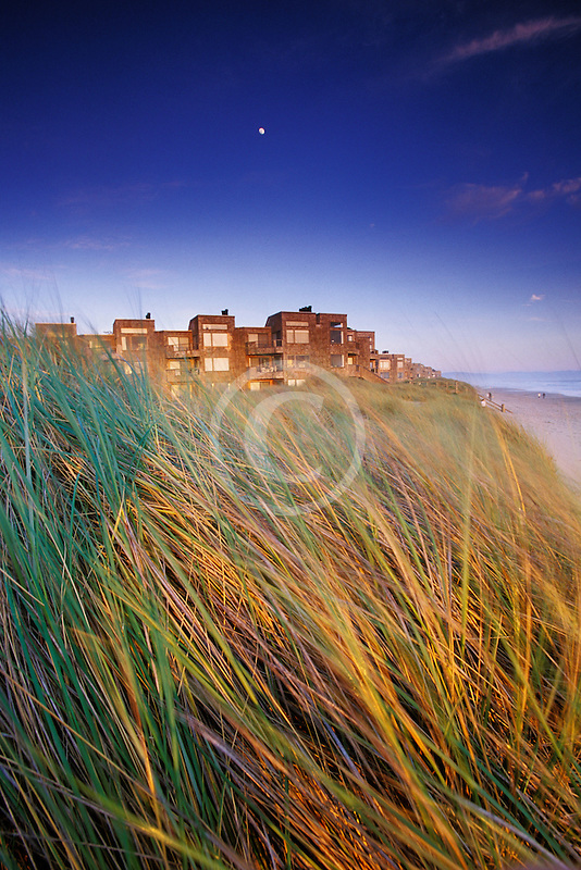 California, Santa Cruz County, Pajaro Dunes, Condos and dune grass with full moon