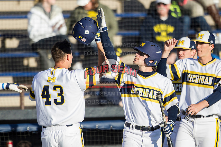 Michigan Wolverines shortstop Michael Brdar (9) greets teammate Carmen Benedetti (43) after scoring against the Central Michigan Chippewas on March 29, 2016 at Ray Fisher Stadium in Ann Arbor, Michigan. Michigan defeated Central Michigan 9-7. (Andrew Woolley/Four Seam Images)