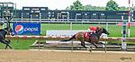 08-August 2017 Delaware Park racing