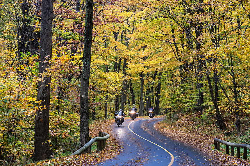 Motorcyclists on rural autumn road, Mt. Greylock State Reservation, Massachusetts, USA