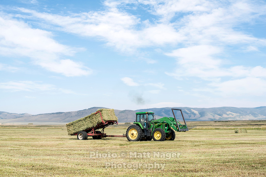 Carl Trick with his daughter Curran Trick on their hay farm in Cowdrey, Colorado, Sunday, August 23, 2015. As part of the 2015 Colorado Water Plan, the North Platte River Basin has called for the use of more irrigation and farming.<br /> <br /> Photo by Matt Nager