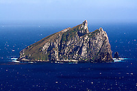La Dent, Campbell Island