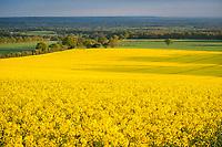 Guildford, Surrey, England