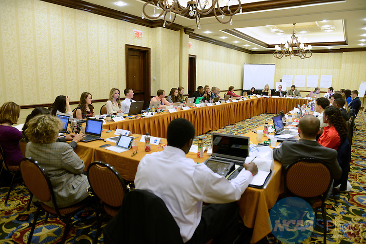15 JAN 2013: The Division I Student-Athlete Advisory Committee Meeting during the 2013 NCAA Convention held at the Gaylord Texan in Grapevine, TX. Stephen Nowland/NCAA Photos.