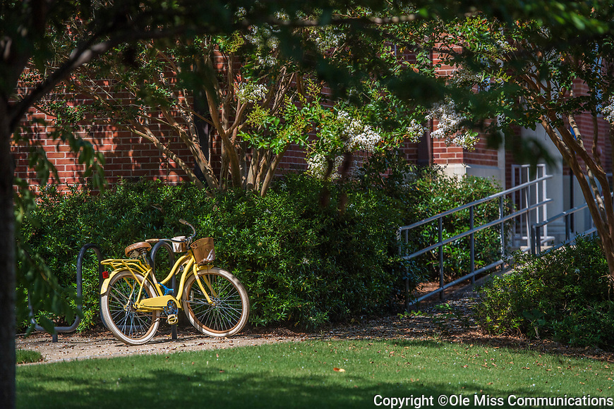 Yellow Bicycle. Photo by Kevin Bain/Ole Miss Communications