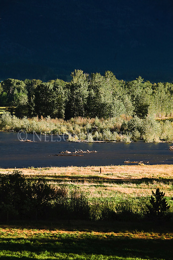 Early morning sun lights the Bitterroot River near Florence, Montana
