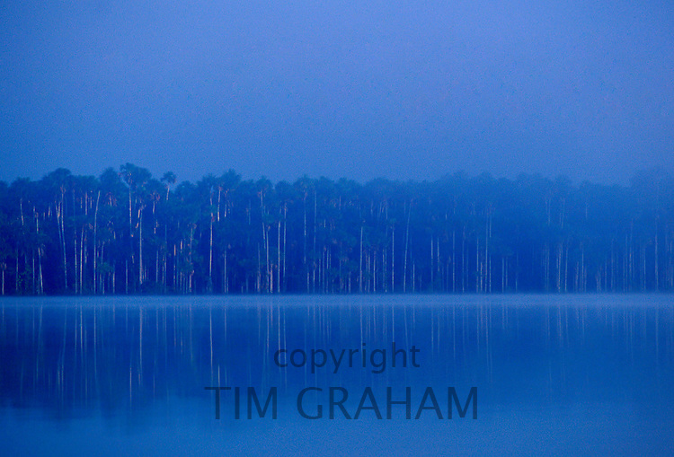 Lake Sandoval in the protected reserved zone Tambopata Peruvian Rainforest, South America