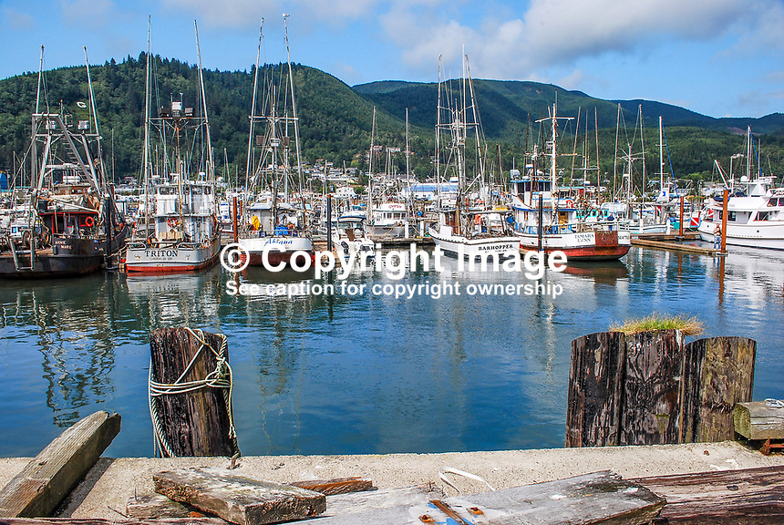 Garibaldi, Oregon, USA, fishing village and marina, 200808310738..Copyright Image from Victor Patterson, 54 Dorchester Park, Belfast, N Ireland, BT9 6RJ...Tel: +44 28 9066 1296.Mob: +44 7802 353836.Email: victorpatterson@mac.com..IMPORTANT - Please visit www.victorpatterson.com and click on Terms & Conditions
