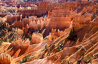 USA, Utah, Bryce Canyon National Park, view of Bryce amphitheatre