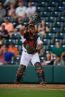Richmond Flying Squirrels catcher Hamlet Marte (14) during an Eastern League game against the Binghamton Rumble Ponies on May 29, 2019 at The Diamond in Richmond, Virginia.  Binghamton defeated Richmond 9-5 in ten innings.  (Mike Janes/Four Seam Images)
