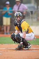 North Dakota State Bison catcher Sean Noel (15) looks to the dugout during a game against the Central Connecticut State Blue Devils on February 23, 2018 at North Charlotte Regional Park in Port Charlotte, Florida.  North Dakota State defeated Connecticut State 2-0.  (Mike Janes/Four Seam Images)