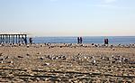 Jersey Central Power & Light sponsored Beach Sweep in Belmar, NJ 10/21/17