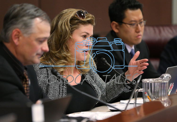 Nevada Sen. Patricia Farley, R-Las Vegas, works in committee at the Legislative Building in Carson City, Nev., on Monday, Feb. 23, 2015. <br /> Photo by Cathleen Allison