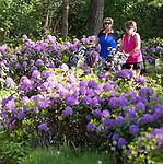 WINTERSWIJK -  Golf & Country Club Winterswijk, golfbaan De Voortwisch.     COPYRIGHT  KOEN SUYK